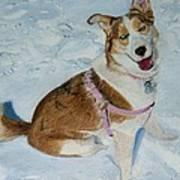 Blue - Siberian Husky Dog Painting Art Print