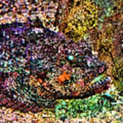 Blue Eyed Fish Art Print