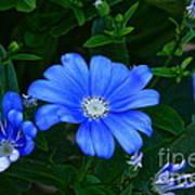 Blue Magic Art Print by Byron Varvarigos