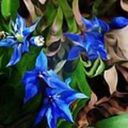 Blue Manipulation Art Print by David Lane