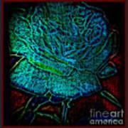 Blue Rose II Art Print