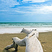 Blue Sea And Sky With Log On The Beach Art Print by Nawarat Namphon