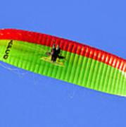Blue Sky Paraglider Art Print