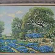 Blue Wildfowers Art Print