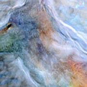 Blue Wolf In Mist Art Print