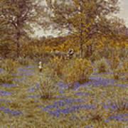 Bluebell Copse Art Print