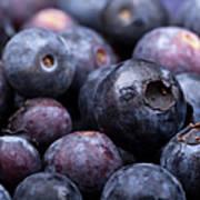 Blueberry Background Art Print