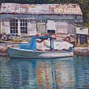 Boat And Shed St. David's Art Print