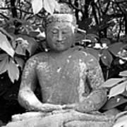 Bold Buddah Art Print
