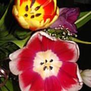 Bold Color Flowers Art Print by Jose Lopez