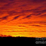 Bold Sunset Art Print