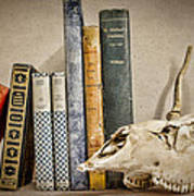 Bone Collector Library Art Print