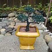 Bonsai Tree Medium Square Golden Vase Art Print