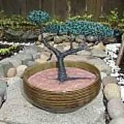 Bonsai Tree Round Brown Planter Art Print