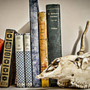 Books And Bones Print by Heather Applegate