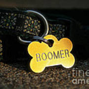 Boomer Gear Art Print