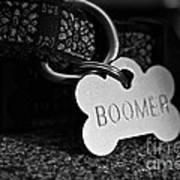 Boomer's Art Print