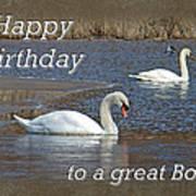 Boss Birthday Card - Mute Swans On Winter Pond Art Print