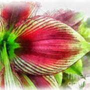 Botanical 01 Art Print