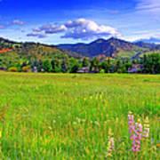Boulder Park View Art Print