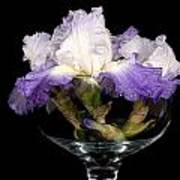 Bowl Of Iris Art Print