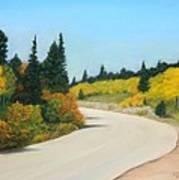 Brainard Lake Road Art Print