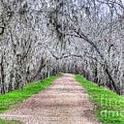 Brazos Bend Pass Art Print