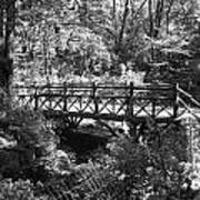 Bridge Of Centralpark In Black And White Art Print