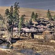Bridge Over A Creek Art Print