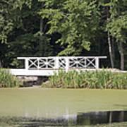 Bridge Over An Algae Covered Pond Print by Jaak Nilson