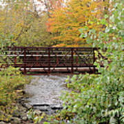 Bridge Over River Art Print