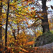 Bright Leaves Art Print