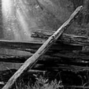 Broken Fence In Morning Light At Yosemite Art Print