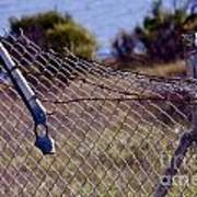 Broken Fence Art Print