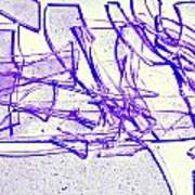 Broken Glass Purple Art Print