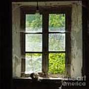 Broken Window. Art Print