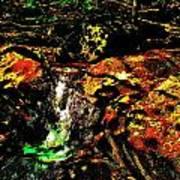 Brook Texture 162 Art Print