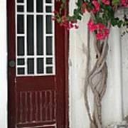 Brown Door In Greece Art Print