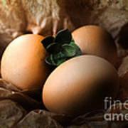 Brown Easter Eggs Art Print