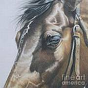 Buckles And Belts In Colored Pencil Art Print