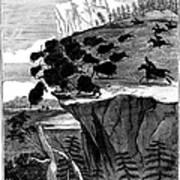 Buffalo Hunt, 1834 Art Print