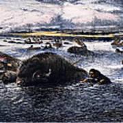 Buffalo Hunt, 1874 Art Print