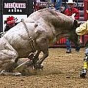 Bull 1 - Cowboy 0 Art Print