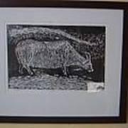 Bull  Art Print