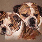 Bulldogs Art Print