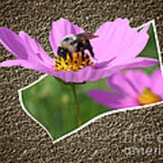 Bumble Bee Pop Out Art Print
