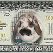 Bunny Money Art Print