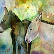 Burros Art Print