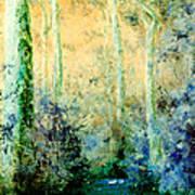 Bush Trail At Sunrise Art Print