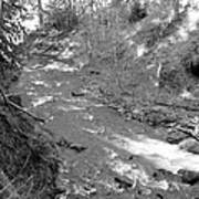 Butte Creek In Black And White Art Print